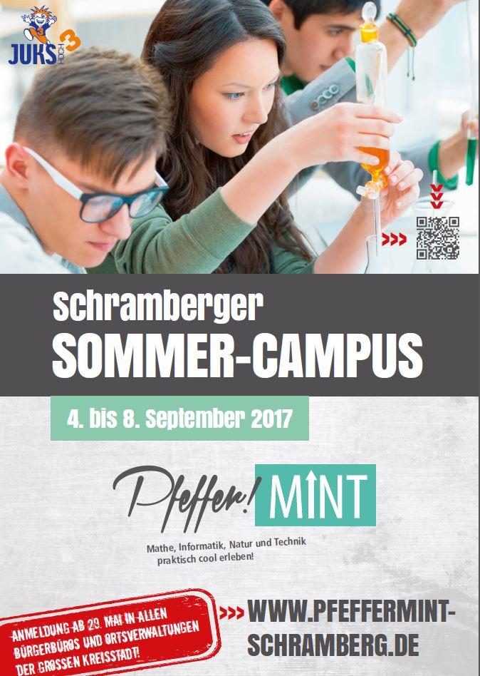2017_PfefferMINT-Plakat.JPG